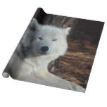 Adorable Arctic Wolf Wrapping Paper