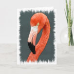 Brilliant Flamingo Greeting Card