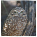 Burrowing Owl Cloth Napkin
