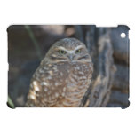 Burrowing Owl iPad Mini Cover