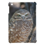 Burrowing Owl iPad Mini Covers