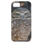 Burrowing Owl iPhone SE/5/5s Case
