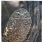 Burrowing Owl Napkin