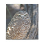 Burrowing Owl Notepad