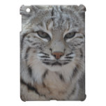 Creeping Bobcat iPad Mini Case