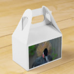 Curious African Crowned Crane Favor Box