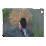 Curious African Crowned Crane iPad Mini Case