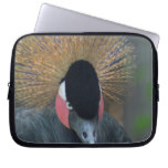 Curious African Crowned Crane Laptop Sleeve