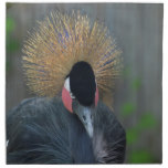 Curious African Crowned Crane Napkin