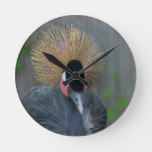 Curious African Crowned Crane Round Clock