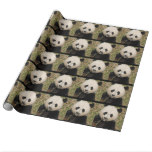 Cute Giant Panda Bear Wrapping Paper