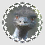 Emu Sticker
