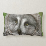 Great Grey Owl Pillow