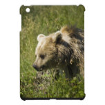 Ipad Mini QPC template iPad Mini Cove - Customized iPad Mini Cover