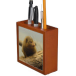 Mongoose a Tree Branch Pencil/Pen Holder