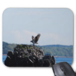Osprey on Nest Mouse Pad