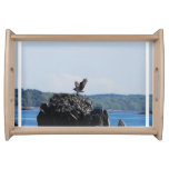 Osprey on Nest Serving Tray
