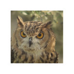 owl-54.jpg wood wall art