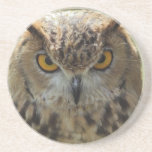 Owl Photo Coasters