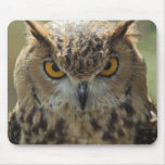 Owl Photo Mouse Pad