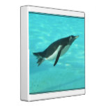 Penguin Swimming Underwater Binder