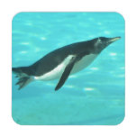 Penguin Swimming Underwater Drink Coaster