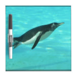Penguin Swimming Underwater Dry Erase Board