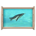 Penguin Swimming Underwater Serving Tray