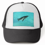 Penguin Swimming Underwater Trucker Hat