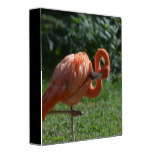 Perfect Pink Flamingo Binder