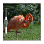 Perfect Pink Flamingo Dry-Erase Board