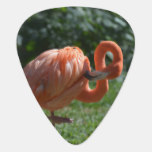 Perfect Pink Flamingo Guitar Pick