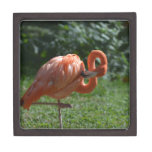 Perfect Pink Flamingo Keepsake Box