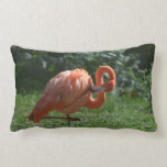 Perfect Pink Flamingo Lumbar Pillow