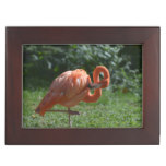Perfect Pink Flamingo Memory Box