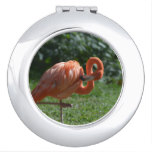 Perfect Pink Flamingo Mirror For Makeup
