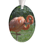Perfect Pink Flamingo Ornament