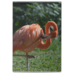 Perfect Pink Flamingo Post-it Notes
