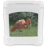 Perfect Pink Flamingo Rolling Cooler