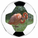 Perfect Pink Flamingo Soccer Ball