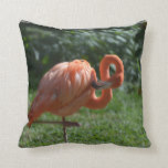 Perfect Pink Flamingo Throw Pillow