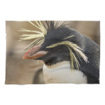 Rockhopper Penguin  Towel