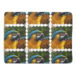 Ruffled Blue and Gold Macaw Baby Blanket