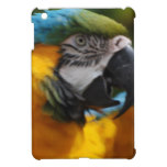Ruffled Blue and Gold Macaw Case For The iPad Mini
