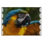 Ruffled Blue and Gold Macaw Cutting Board