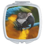 Ruffled Blue and Gold Macaw Makeup Mirror