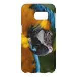 Ruffled Blue and Gold Macaw Samsung Galaxy S7 Case