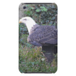 Standing American Bald Eagle Barely There iPod Cover