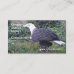 Standing American Bald Eagle Business Card