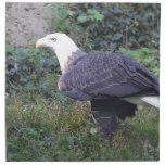 Standing American Bald Eagle Cloth Napkin